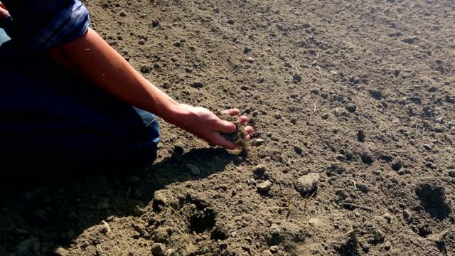 Farmer checking soil - 2 shots video