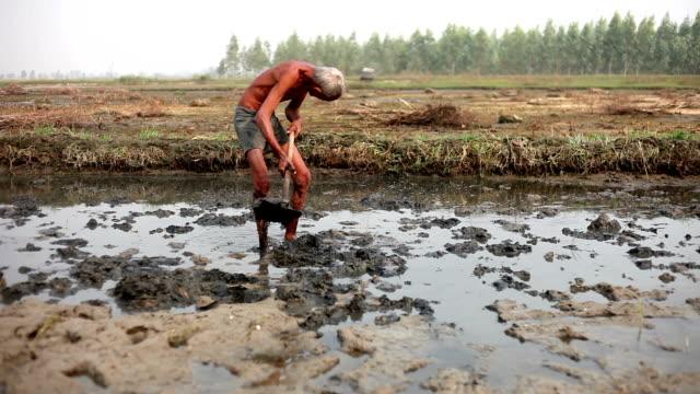 bonden som gräva i fältet - skyffel bildbanksvideor och videomaterial från bakom kulisserna
