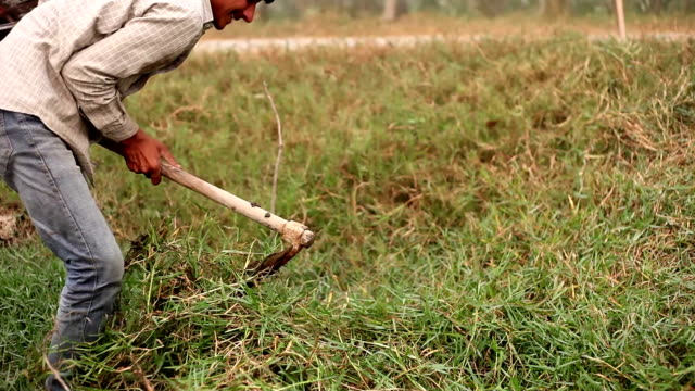 farmer digging in the field - haryana video stock e b–roll