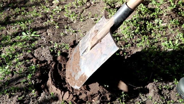 vidéos et rushes de agriculteur creuser le rez-de-chaussée - équipement agricole