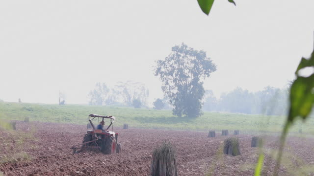 farmer driver Tractor plowing cassava field farmer driver Tractor plowing cassava field red potato stock videos & royalty-free footage
