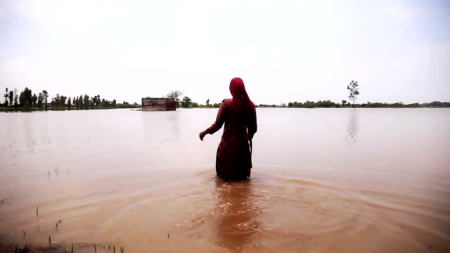 Farmer entering in his field filled with water Poor female farmer entering in his field filled with water due to heavy rain. drenched stock videos & royalty-free footage