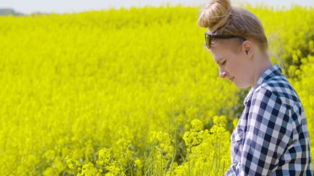 farmer examining rapeseed blooming plants - colza video stock e b–roll