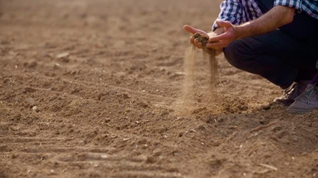 farmer examining soil quality on fresh cultivated field. - fertilizzante video stock e b–roll