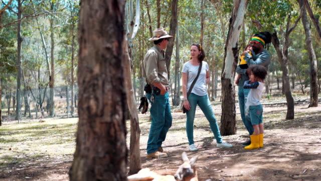 Farmer explaining about kangaroos on a tourist farm video