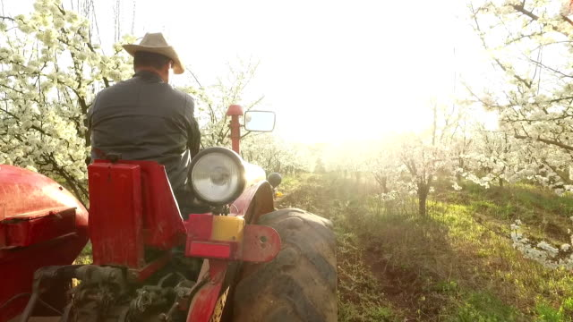 Farmer going through a farm on a  tractor video