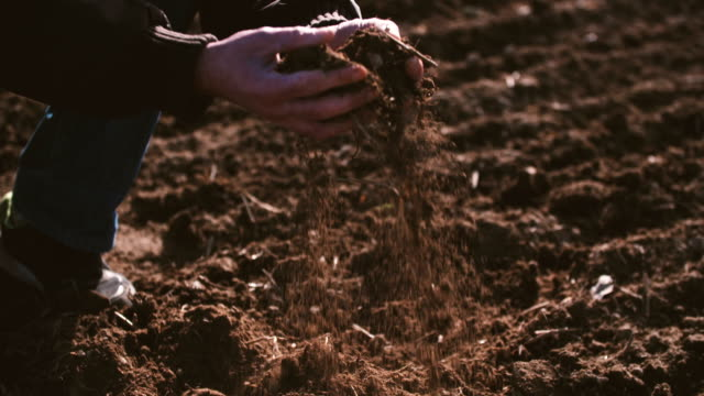 Farmer hands holding and pouring back organic soil. Soil, Agriculture, Sunlight. video