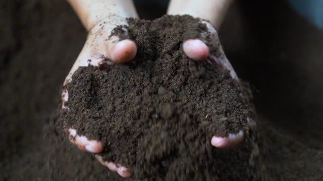 farmer hands holding and pouring black soil - pugno video stock e b–roll