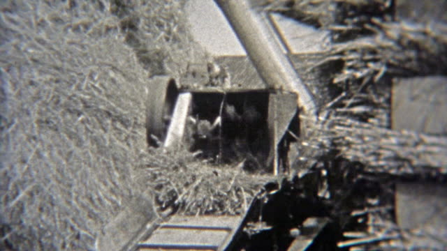 1937: Farmer harvesting hay using the new automatic machine. video