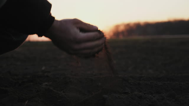 Farmer holding ground in hands close-up
