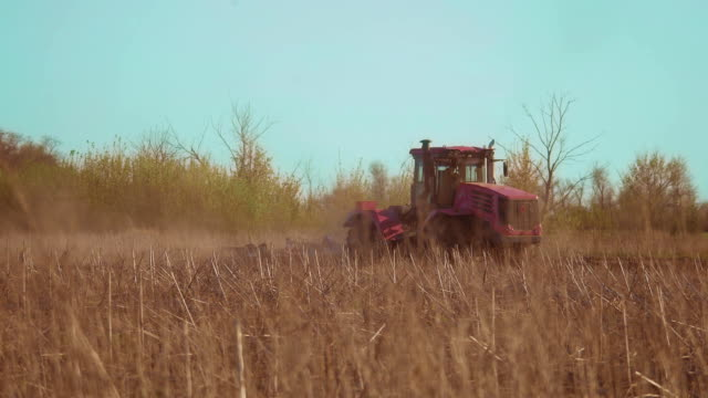 Farmer in tractor Russia agriculture soil ground preparing land with seedbed cultivator as part of pre seeding activities in early spring season lifestyle of agricultural works at farmlands - vídeo