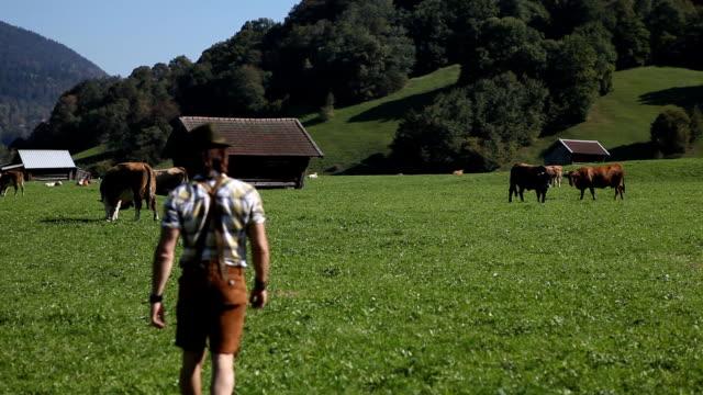 農家の寿命 - 家畜点の映像素材/bロール