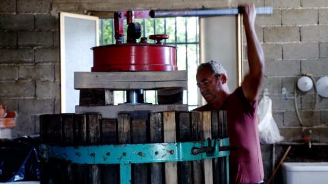 farmer manually presses the grapes in the press- homemade wine video