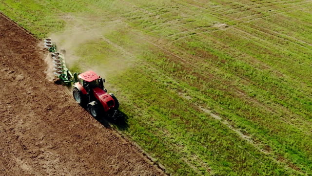 Farmer on a red tractor plows the dusty arid soil Aerial view of farmer on a red tractor plowing dusty arid soil. The farm car is followed by hungry birds. Agribusiness in the spring plow stock videos & royalty-free footage