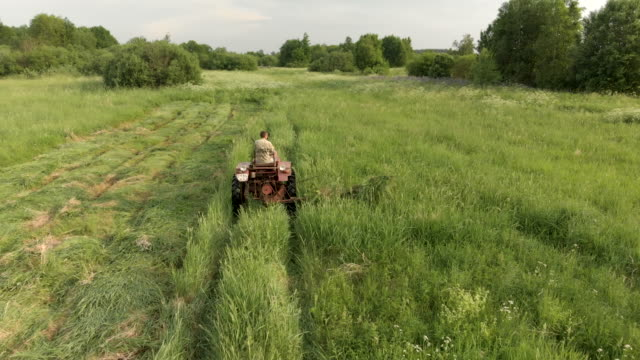 Farmer on a vintage tractor without a cab mows tall grass in summer. Harvesting hay for livestock