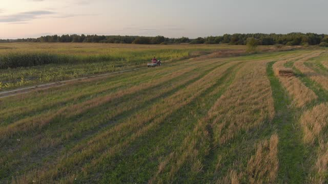 Farmer on mini tractor with trailer