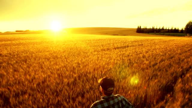 農家でまとめた農作物の成功をお約束します。 ビデオ
