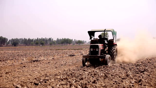 Farmer plowing field HD1080p: Rural farmer plowing field using tractor & harrow for next crop plantation. haryana stock videos & royalty-free footage