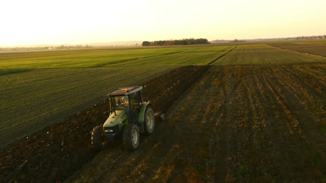 aerial farmer plowing the field at dawn - aerial agriculture stock videos & royalty-free footage