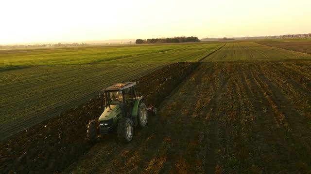 aerea agricoltore andare sul campo all'alba - trattore video stock e b–roll