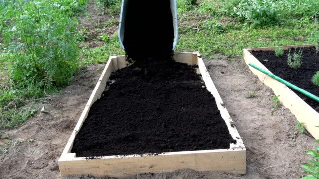 agricoltore versando humus terreno nero dalla carriola al nuovo letto rialzato in legno - fertilizzante video stock e b–roll