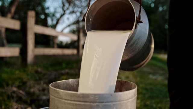 SLO MO Farmer pouring milk from a canister video