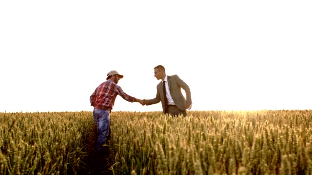 slo mo farmer shaking hands with an executive - farmer stock videos and b-roll footage