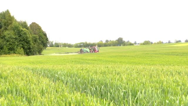farmer spray crop field at summer season, herbicides, pesticides video