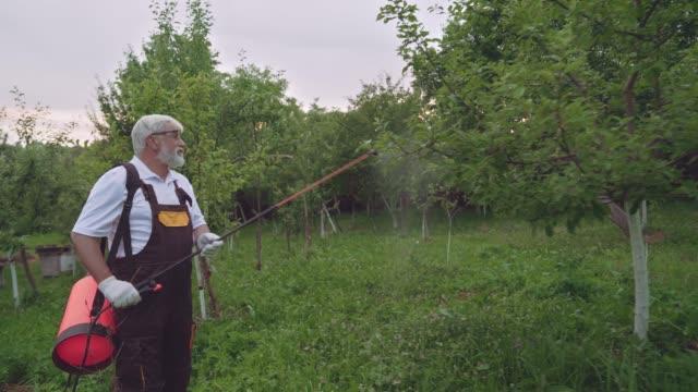 vidéos et rushes de fermier pulvérisant des arbres pour les protéger des maladies fongiques - herbicide