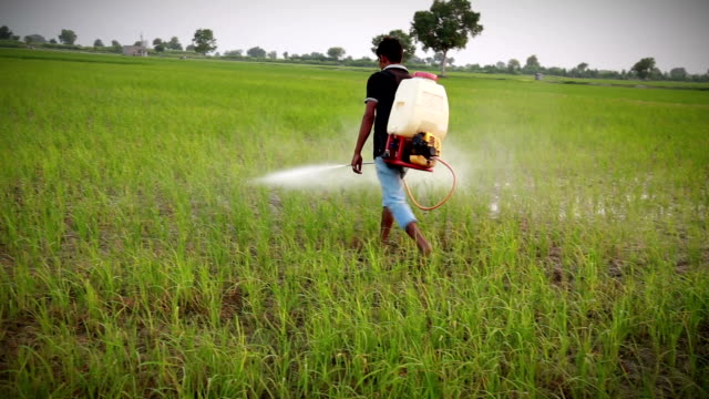 Farmer Spraying video