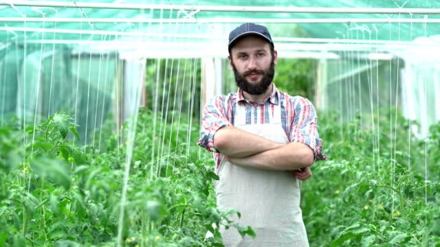landwirt stehend arme gekreuzt im gewächshaus - urban gardening stock-videos und b-roll-filmmaterial