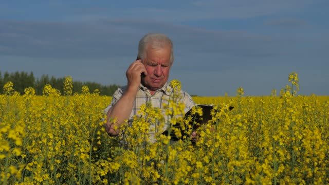Farmer standing with a folder in a lush yellow field and talking on the phone. video