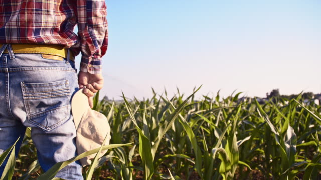 SLO MO Farmer taking off his cap in the field