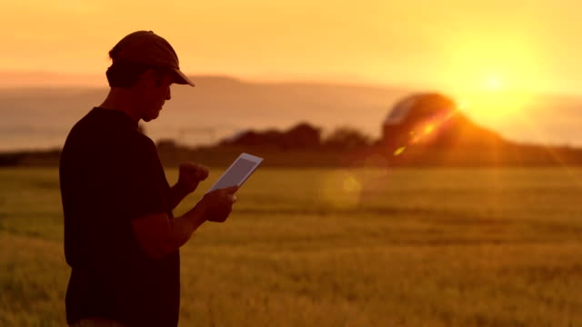 Farmer uses Tablet While Looking at Crops