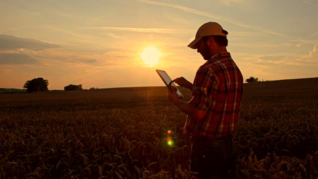 WS DS agricultor usando una tableta Digital en campo - vídeo