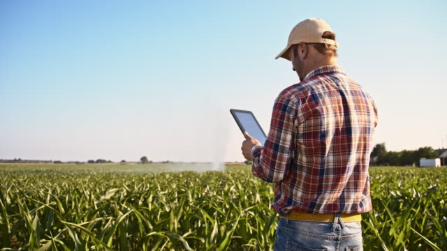 Farmer using a digital tablet in the field video