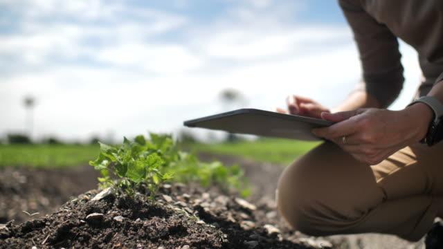 Farmer using Digital tablet in Farm, Close-up