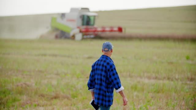 Farmer using digital tablet while examining field Mature farmer using digital tablet while examining field at farm plaid stock videos & royalty-free footage