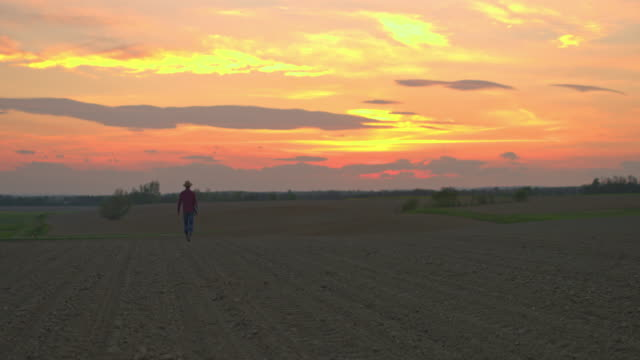 WS Farmer walking in idyllic,rural plowed field at sunset