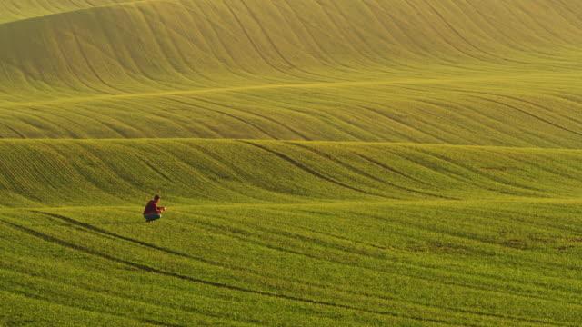 pan agricoltore che cammina sul campo - paesaggio collinare video stock e b–roll