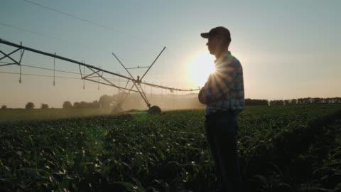 vídeos de stock e filmes b-roll de farmer watching the irrigation cornfield - agricultor