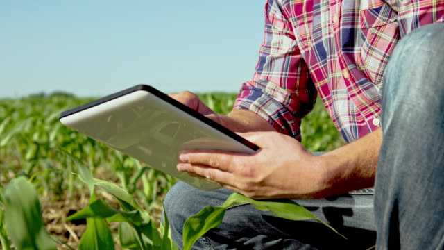 MS DS Farmer With A Digital Tablet video