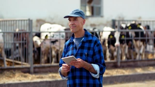 vidéos et rushes de agriculteur avec des vaches dans l'étable sur la ferme laitière avec la ferme d'élevage, l'agriculture, élevage, stable fourche utilisation agriculteur dans l'écurie. - foin