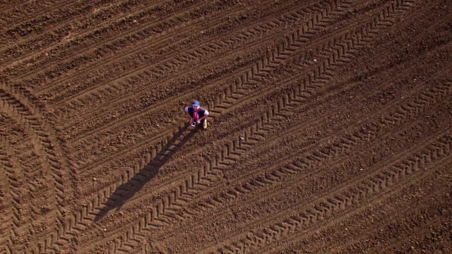 Farmer with drone in stripped field