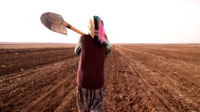 Farmer Woman 4K, 25P, Real Time turkey middle east stock videos & royalty-free footage