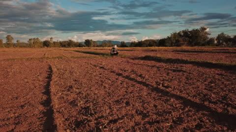 vidéos et rushes de femme de fermier avec la tablette numérique contrôlant le sol organique agriculture riz champ de blé de terrasse pendant une saison sèche d'été, vue aérienne - exactitude
