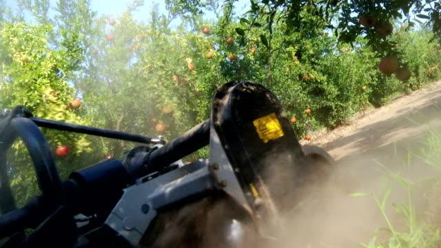 vídeos de stock e filmes b-roll de agricultor trabalhar com romã exploração - romã