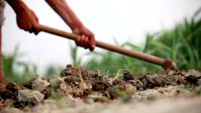 vidéos et rushes de agriculteur travaillant dans le champ - équipement agricole