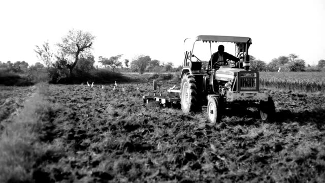 Farmer working in the field video