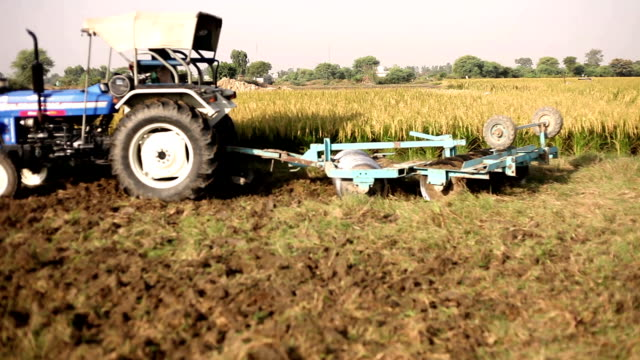 Farmer working in the field HD1080p: Farmer plowing field & sowing wheat using tractor in rural India. haryana stock videos & royalty-free footage